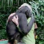 животните са по-благодарни от хората